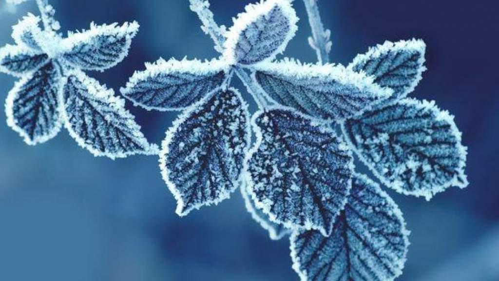Синоптики дали прогноз на новогоднюю ночь и первый день нового года