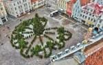 Ратушную площадь в Таллине украсили лабиринтом из елок