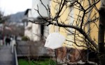 В Эстонии добавилось 690 новых случаев заражения коронавирусом