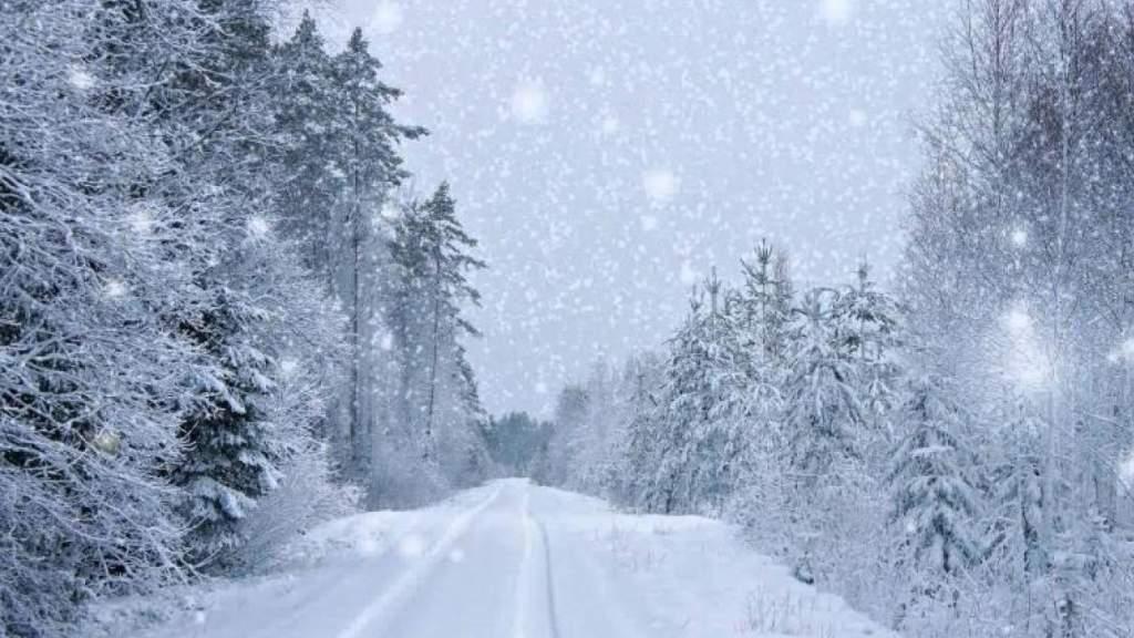 В Латвии сегодня обещают снегопад, но не везде