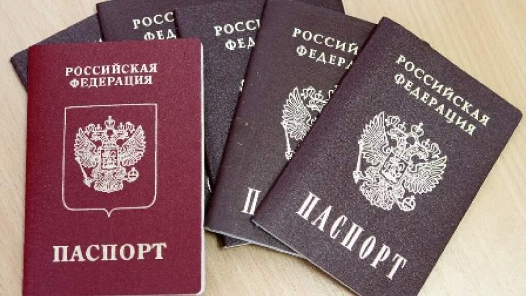 В Новосибирской области огласили число соотечественников, переехавших в регион за 2020 год
