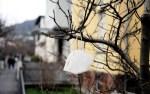 В Эстонии за сутки выявили 1375 случаев заражения Covid-19, скончались семь человек
