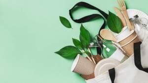 Насколько экологичный образ жизни вы ведёте? Тест «Чемпионата»
