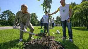 Соотечественников в Ирландии приглашают присоединиться к акции «Сад памяти»