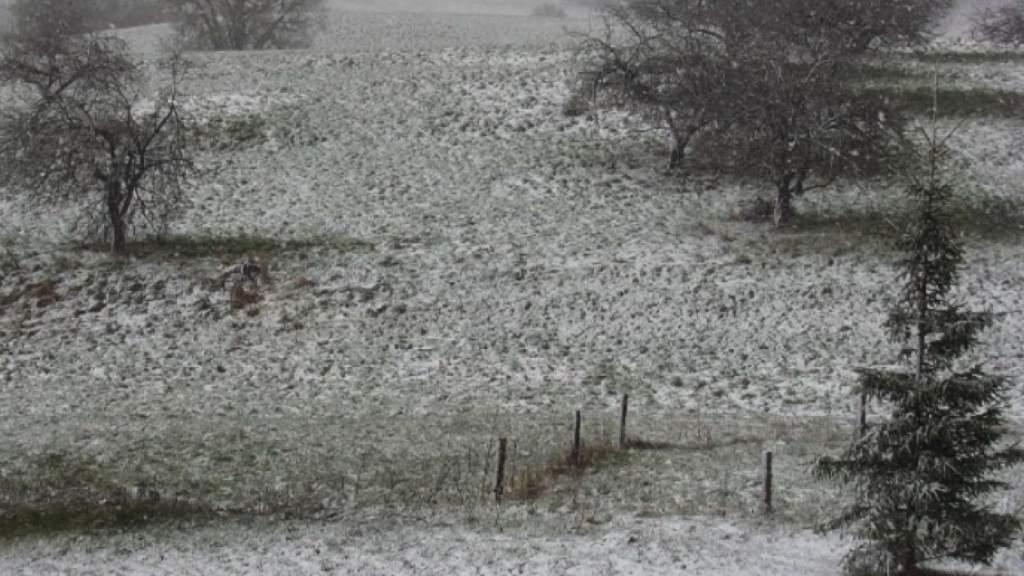 «Ну и май...»Синоптики дали прогноз погоды на вторник: снег и порывистый ветер