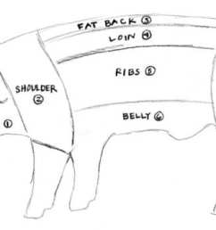 baltimore fishbowl pig diagram by elspeth diagram of parts on a hog for meat show pig diagram [ 1600 x 927 Pixel ]