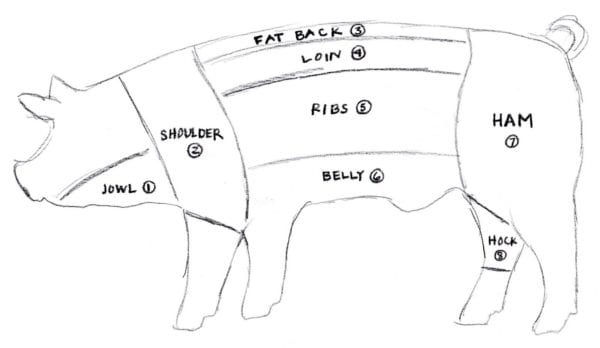 hight resolution of baltimore fishbowl pig diagram by elspeth diagram of parts on a hog for meat show pig diagram