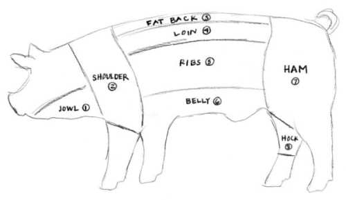 small resolution of baltimore fishbowl pig diagram by elspeth diagram of parts on a hog for meat show pig diagram