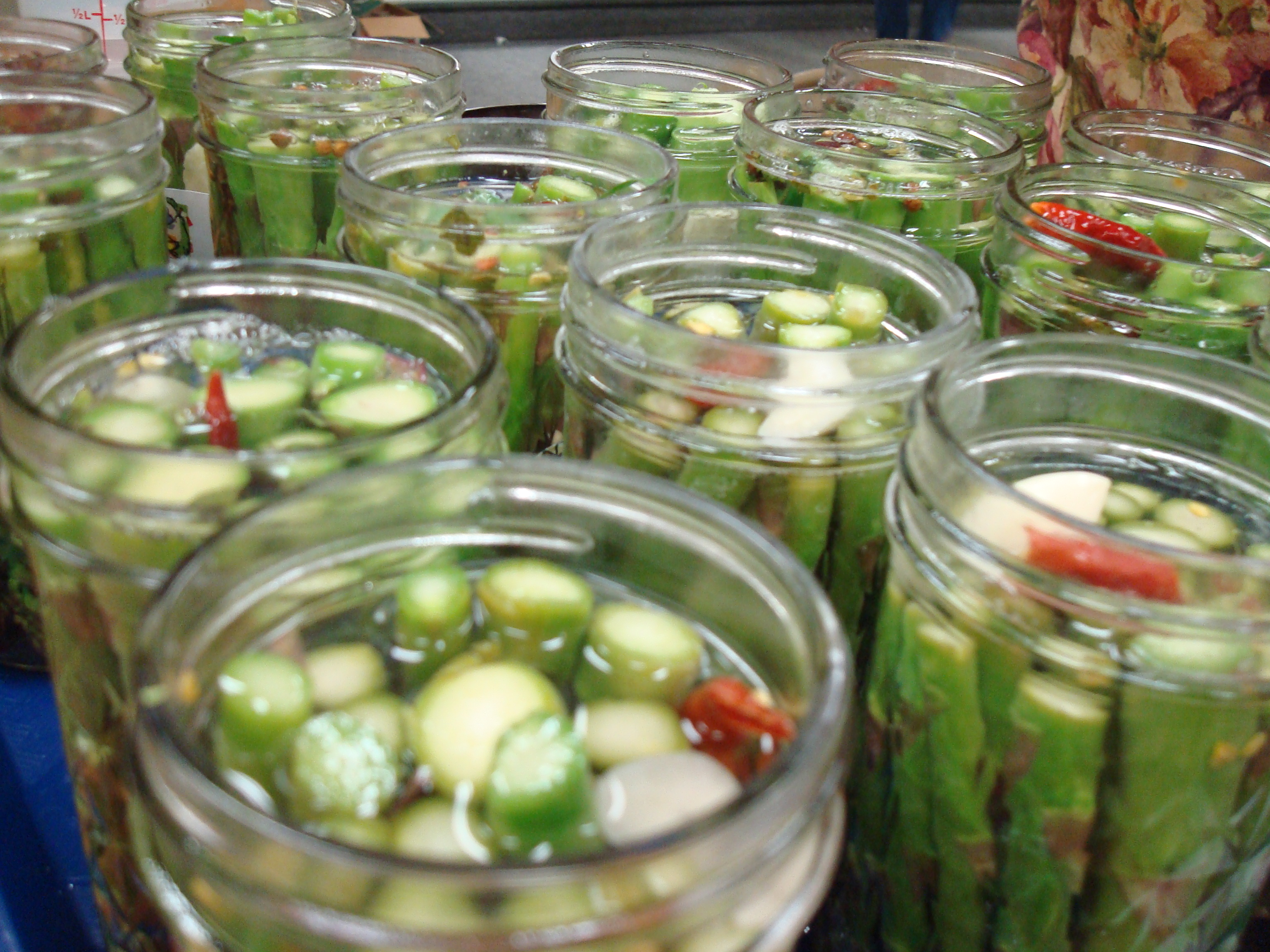 Pickles we low-pasteurize water-bath canned in class