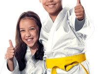 91% Off Kids Martial Arts Classes