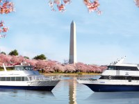 Half Price Tickets to See Cherry Blossoms on Springtime Harbor Cruise