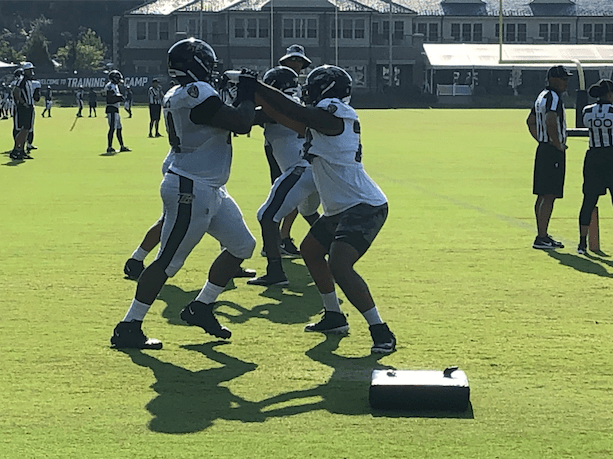 Twelve Ravens thoughts following Day 12 of open training camp