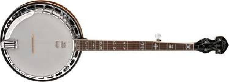 gambar alat musik petik lengkap