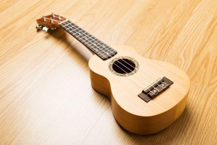 nama nama alat musik petik