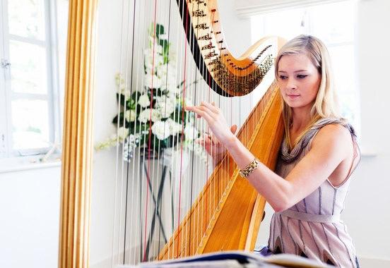 contoh alat musik petik beserta cara memainkannya