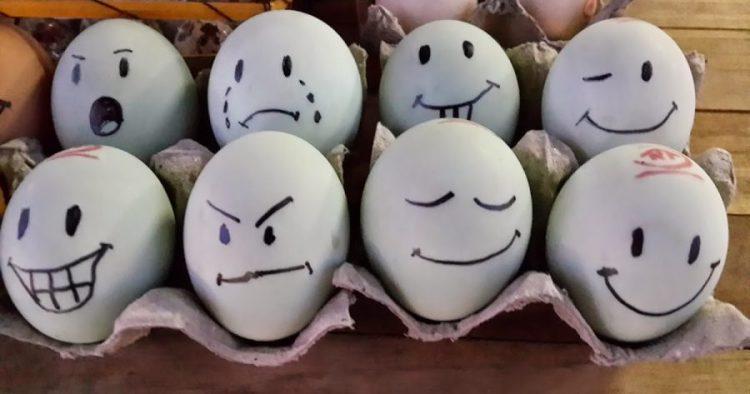 video cara membuat telur asin