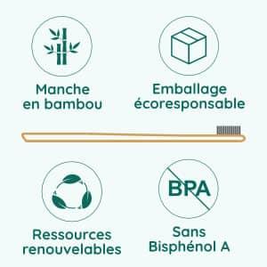 brosse à dents infographie