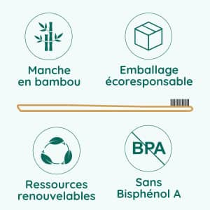 infographie brosses à dents