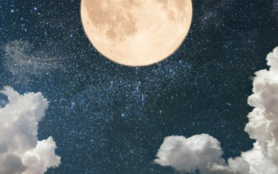 Leo's Moon – What prompted you to write the book?