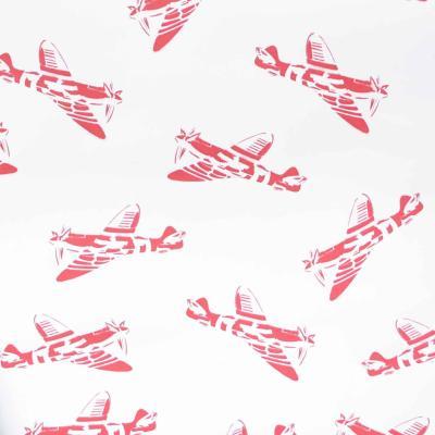 10 Best: Ideas for an aviation-themed room