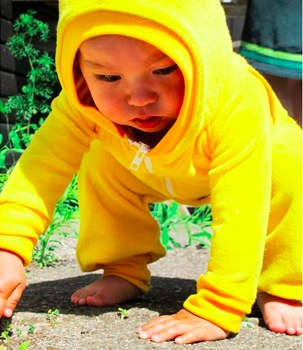 Hot! Alba Baby Yellow Zam Jumpsuit