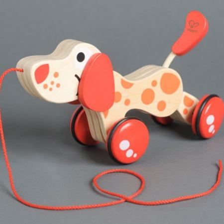 Sevenly Pullalong Dog