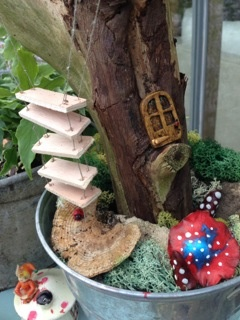 Inspiration: Tze Ching Yeung and her fairy gardens