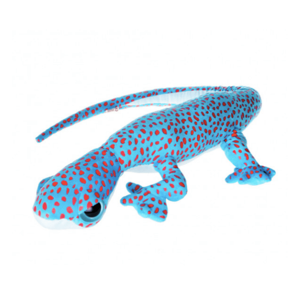 Tokay gecko soft toy, £20, Natural History Museum Shop.