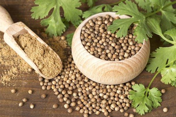 coriander-seeds-leaves-powder