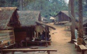 Dorf im Urwald