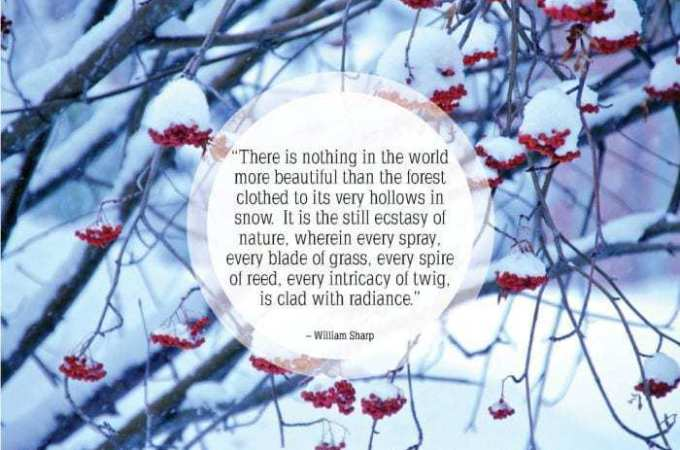 Inspirational-snow-quotes12