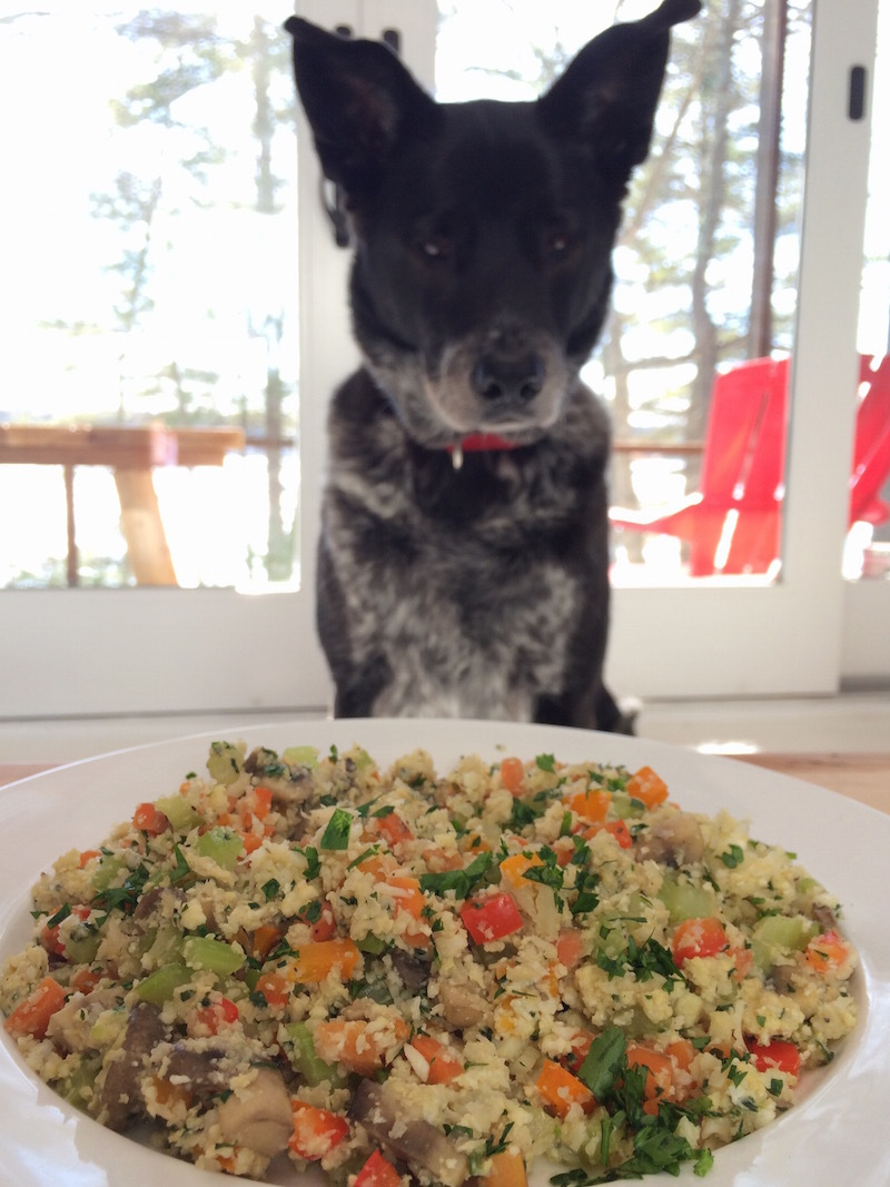 Tucker And Cauliflower Fried Rice
