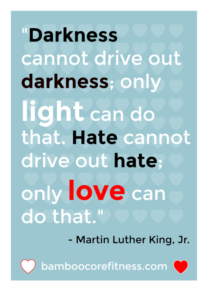 """Darkness cannot drive out darkness; only light can do that. Hate cannot drive out hate; only love can do that."" - Martin Luther King, Jr."