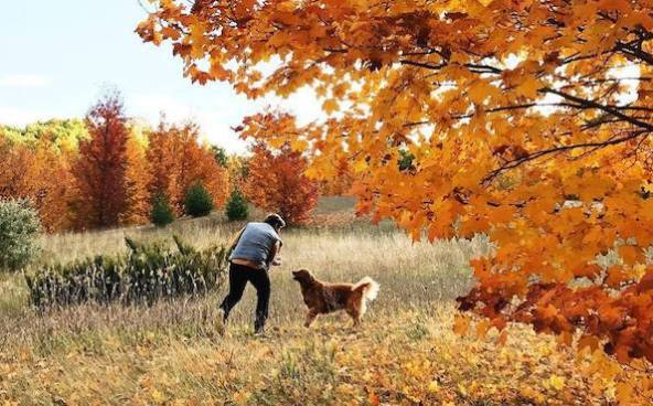 17 tips for fall fitness
