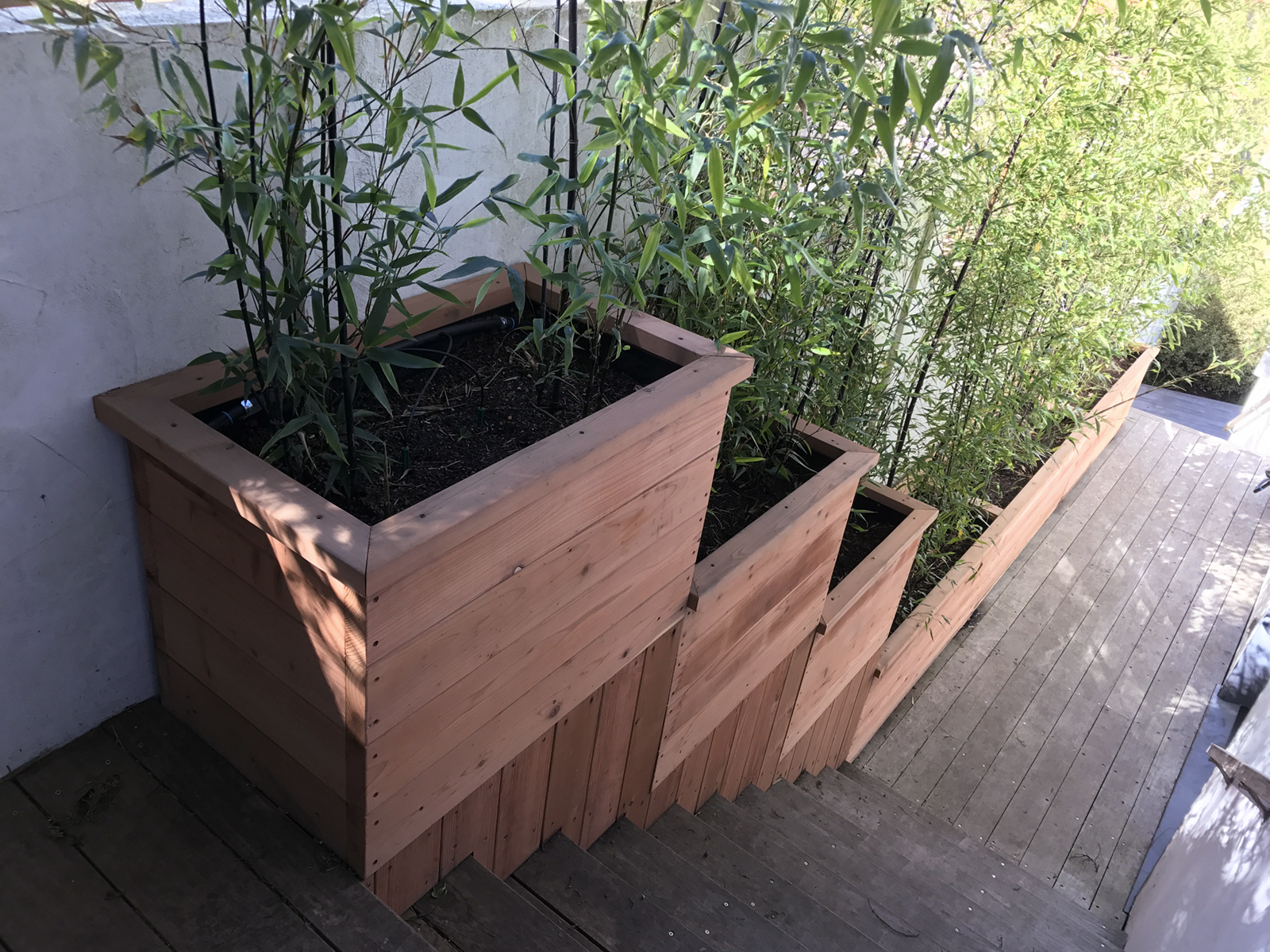 Containers & Planter Boxes for Bamboo - Bamboo Sourcery