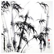 Bambou Japonais Dessin Galerie Creation