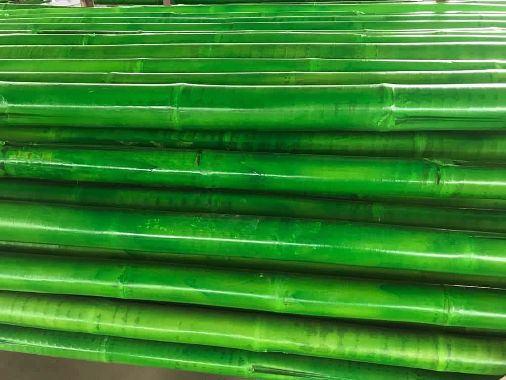 Tiges de bambou vert