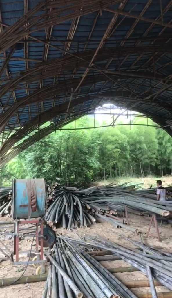 Entrepôt de stockage des tiges de bambou en Chine