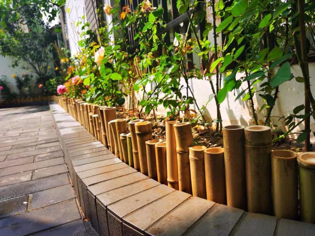 Tiges de bambou naturel pour faire un parterre de fleurs