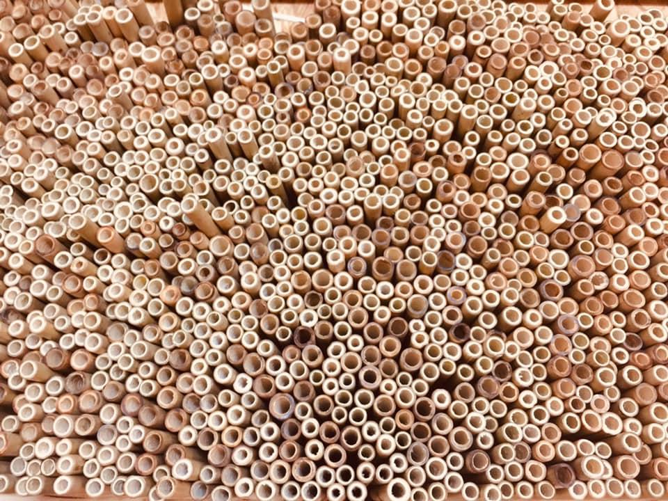Pailles en bambou fabriquées près de Biarritz