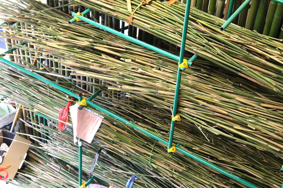 Pailles en bambou made in France