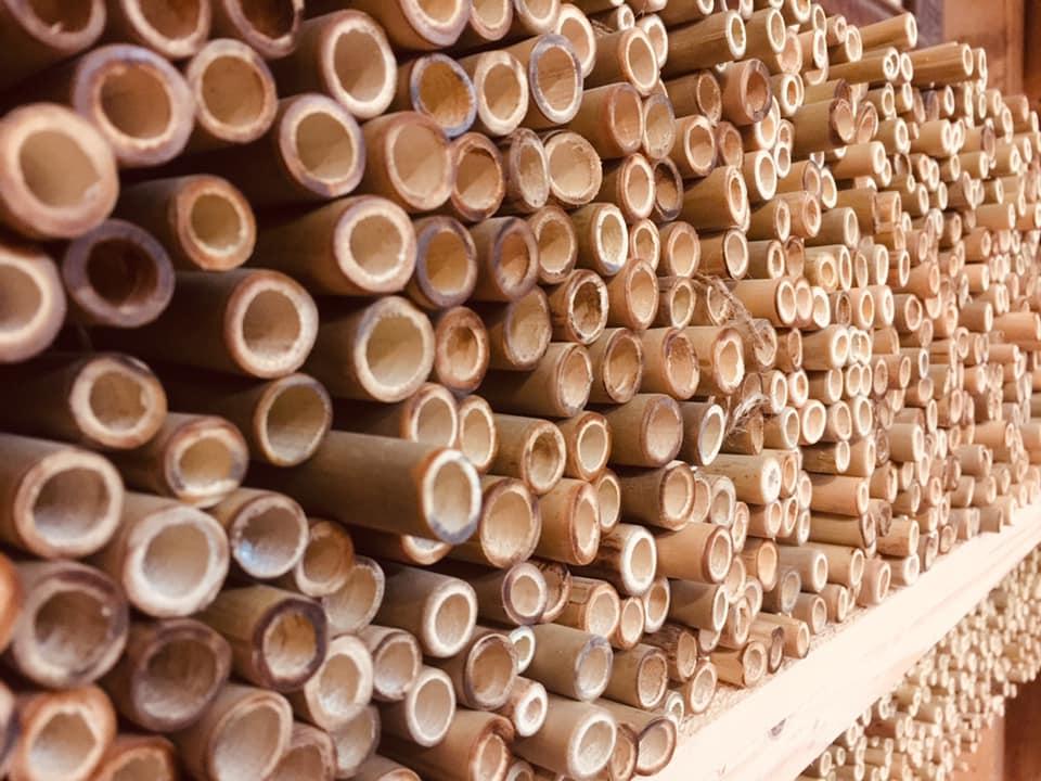 Les pailles en bambou made in France sont réutilisables