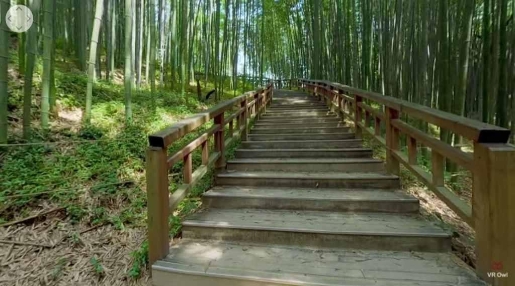 Forêt de bambous Jungnokwon
