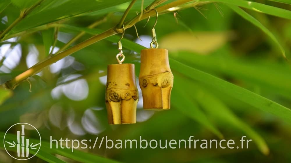Boucles d'oreille en bambou