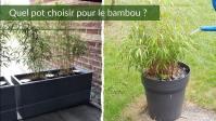 Quel Pot Pour Bambou Choisir ? Guide Complet 2021 (Dimensions, Jardinière, Bac...)