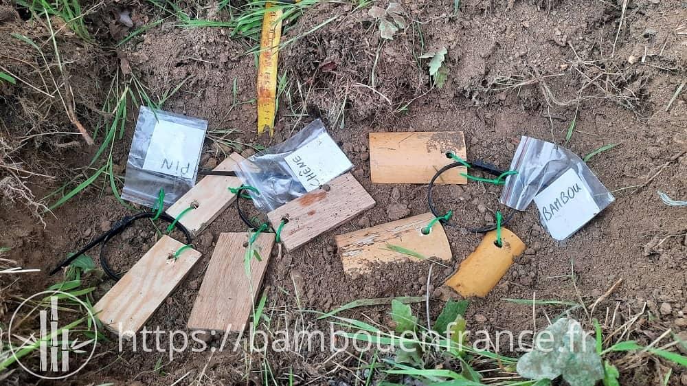 Expérience de dégradabilité du bambou