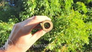 bambou creux
