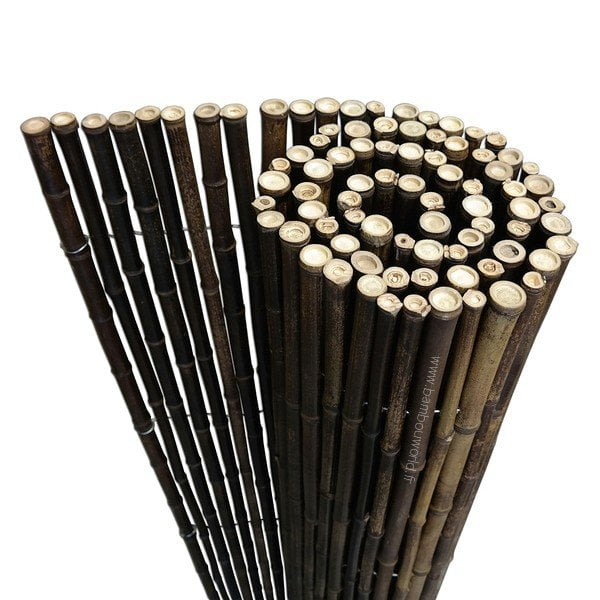 cloture bambou noir o 20 28mm