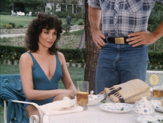 "While there are likely some other screenshots that allow for a better view of Luke's later-seasons belt buckle, none of them offer Stepfanie Kramer - a few months before her career-defining role on Hunter - in an '80s bathing suit. Having both Stepfanie Kramer and Catherine Bach in the same episode makes ""Undercover Dukes"" a highlight for me."