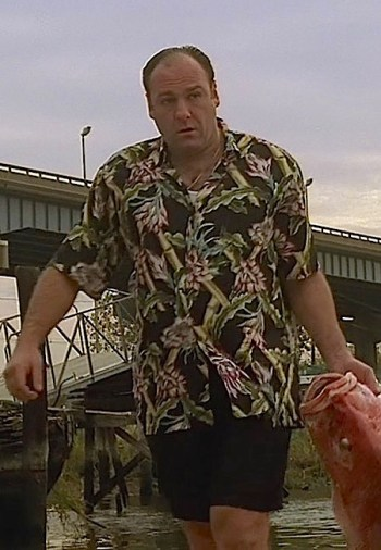 "James Gandolfini as Tony Soprano on The Sopranos (Episode 1.13: ""I Dream of Jeannie Cusamano"")"